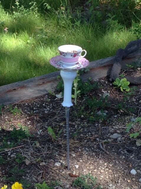 My teacup bird feeder