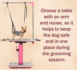 Pro grooming table
